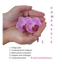 compassie meditaties
